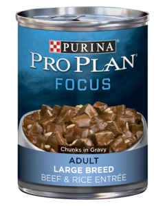pro-plan-focus-adult-large-breed-beef-and-rice-entree