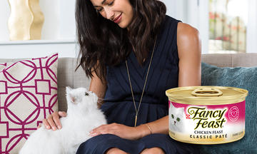wet-cat-pink-pillow-fancy-feast-review-classic-pate-500x300