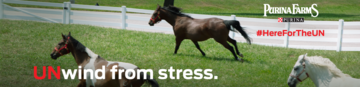 Purina Farms - UNwind from stress