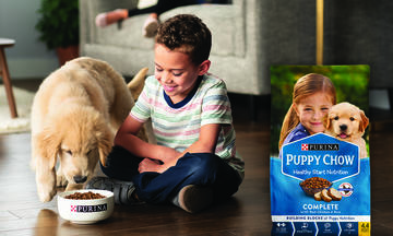 purina-puppy-chow-reviews