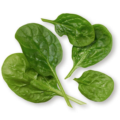 Spinach (Dried)